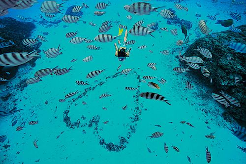 Woman Snorkeling with Tropical Fish in French Polynesia