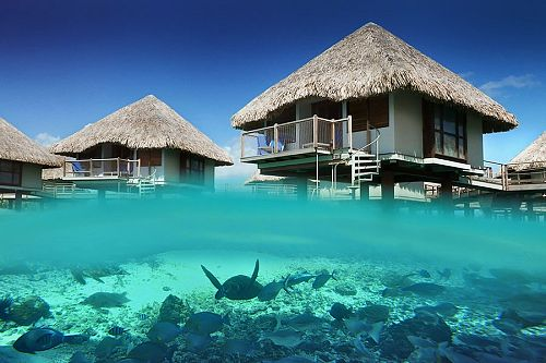 Overwater Bungalow at Le Meridien Bora Bora with View of the Reef
