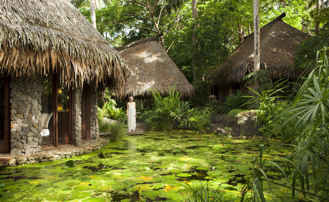 Forested spa at Laucala - Laucala Resort - Fiji Islands - Fiji Island Resorts