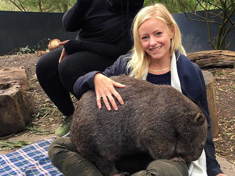 Cuddling Maggie the wombat at Healesville Sanctuary in Australia - Laura Tober, luxury travel designer