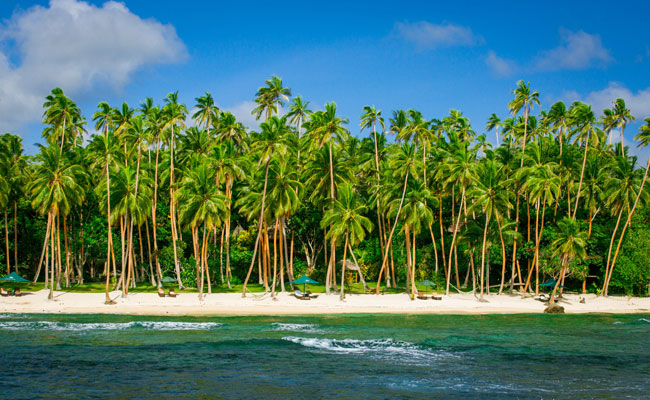 Palm Lined Beach - Namale Resort & Spa - Fiji Must See Places