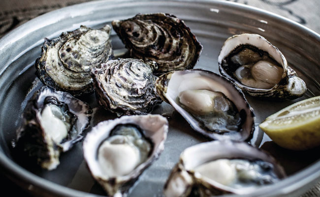 Fresh Oysters on a Plate - Tourism Tasmania - Travel Australia Food and Wine