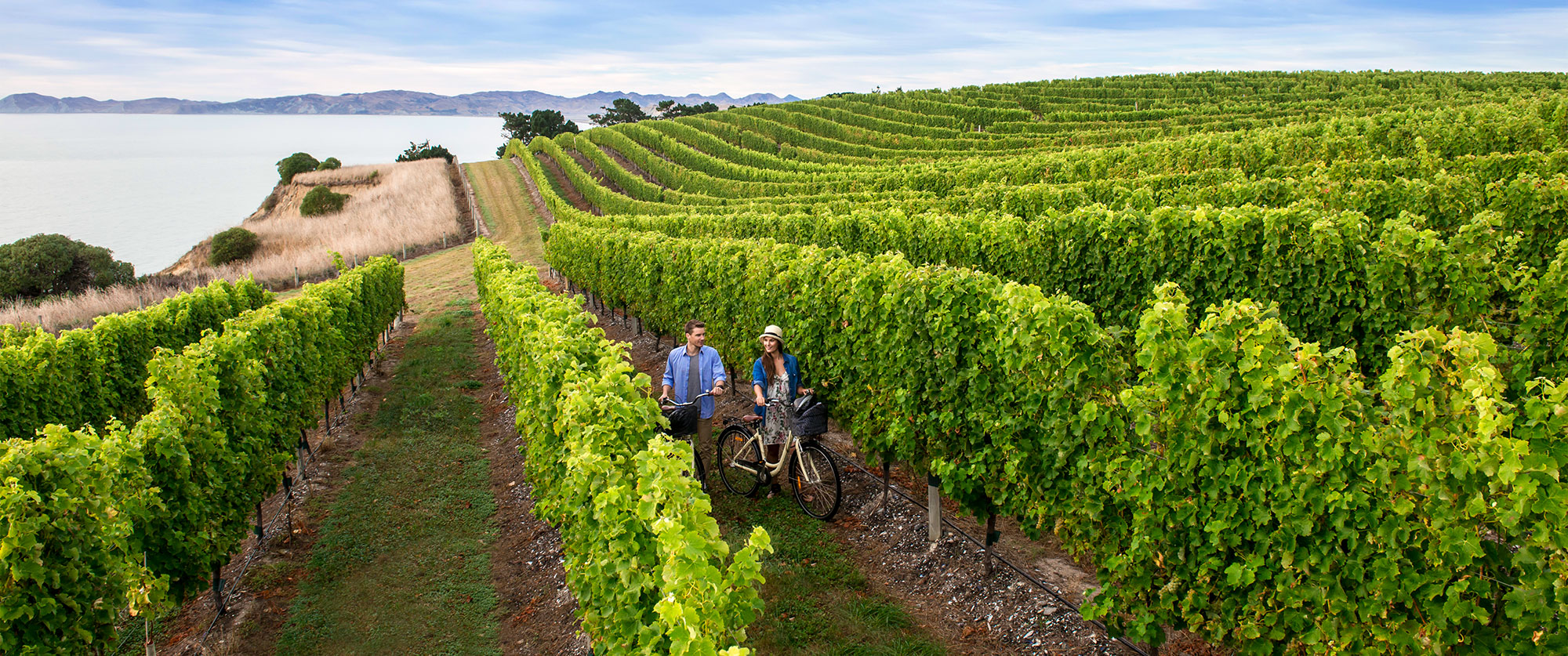 New Zealand Honeymoon Package: Feast of the Senses - Marlborough Wine