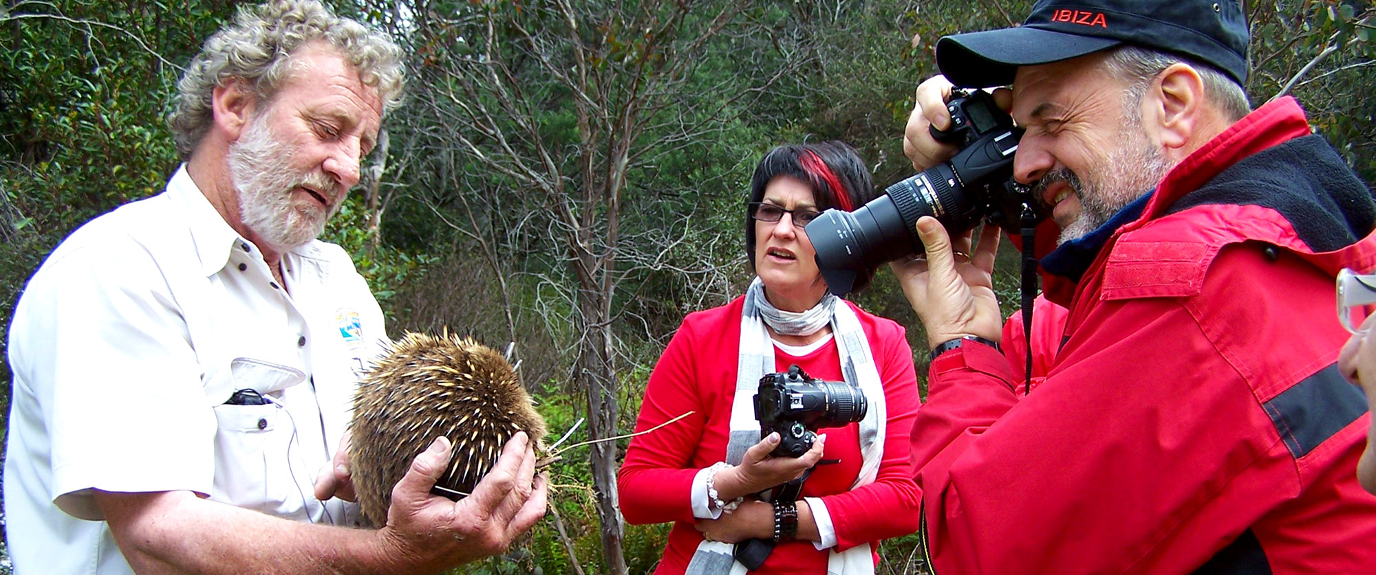 Best of Tasmania Vacations: Highlights of Tasmania - Wildlife Tour