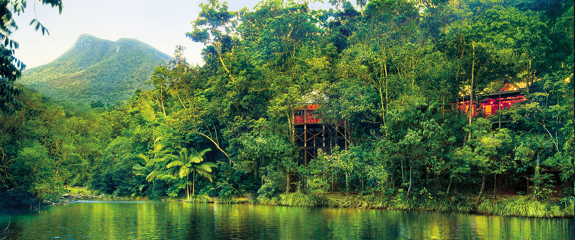 Australia Vacations - Great Barrier Reef Daintree Rainforest Treehouse