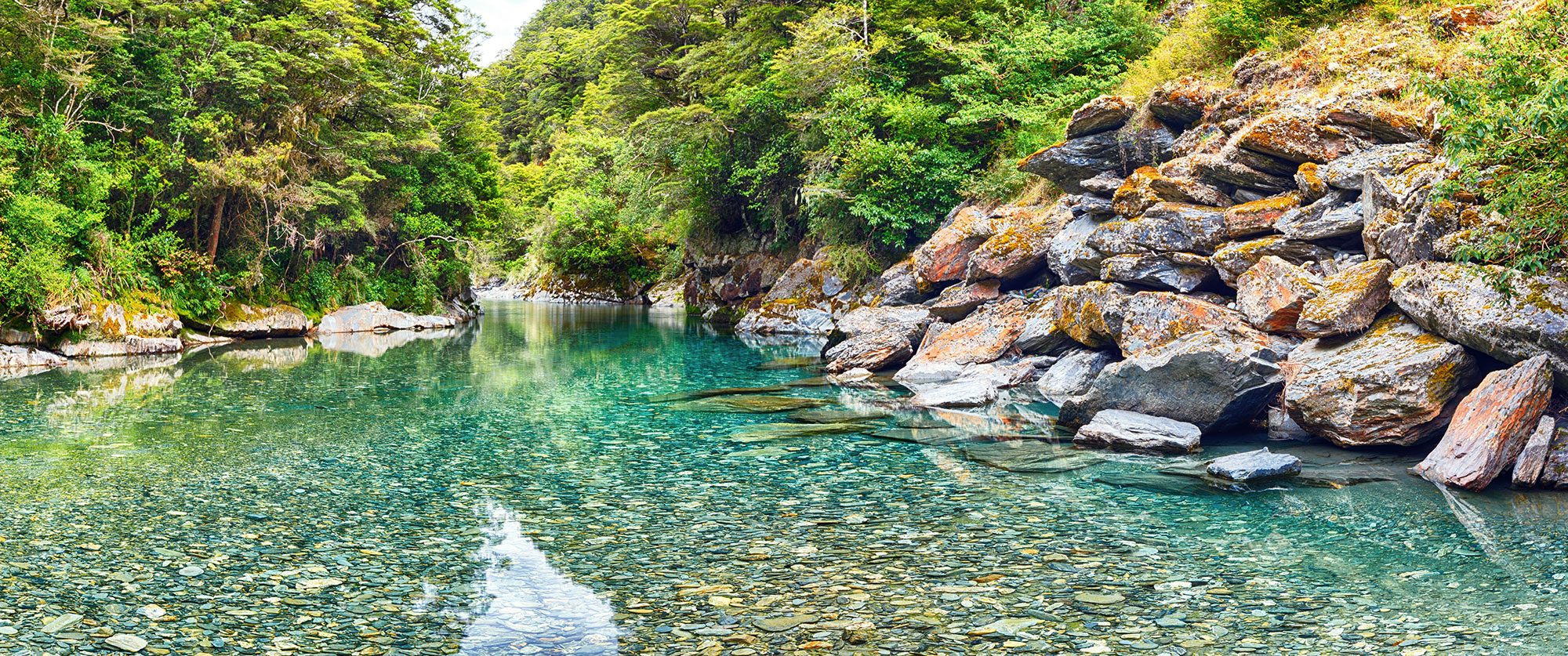 New Zealand Family Vacation - Haast Pass