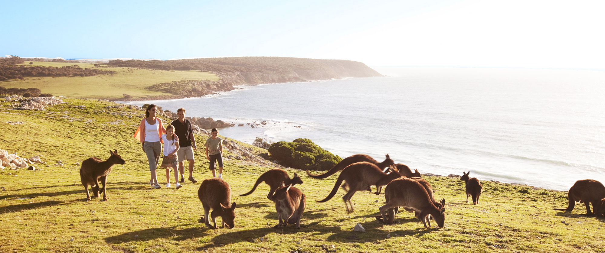Family Holidays South Australia Package Kangaroo Island - Vacation to australia