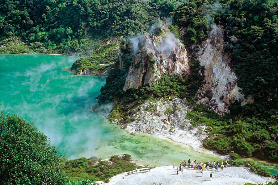 New Zealand Adventure - Penguins, Fiordlands, Wilderness - Cathedral Cove Rotorua