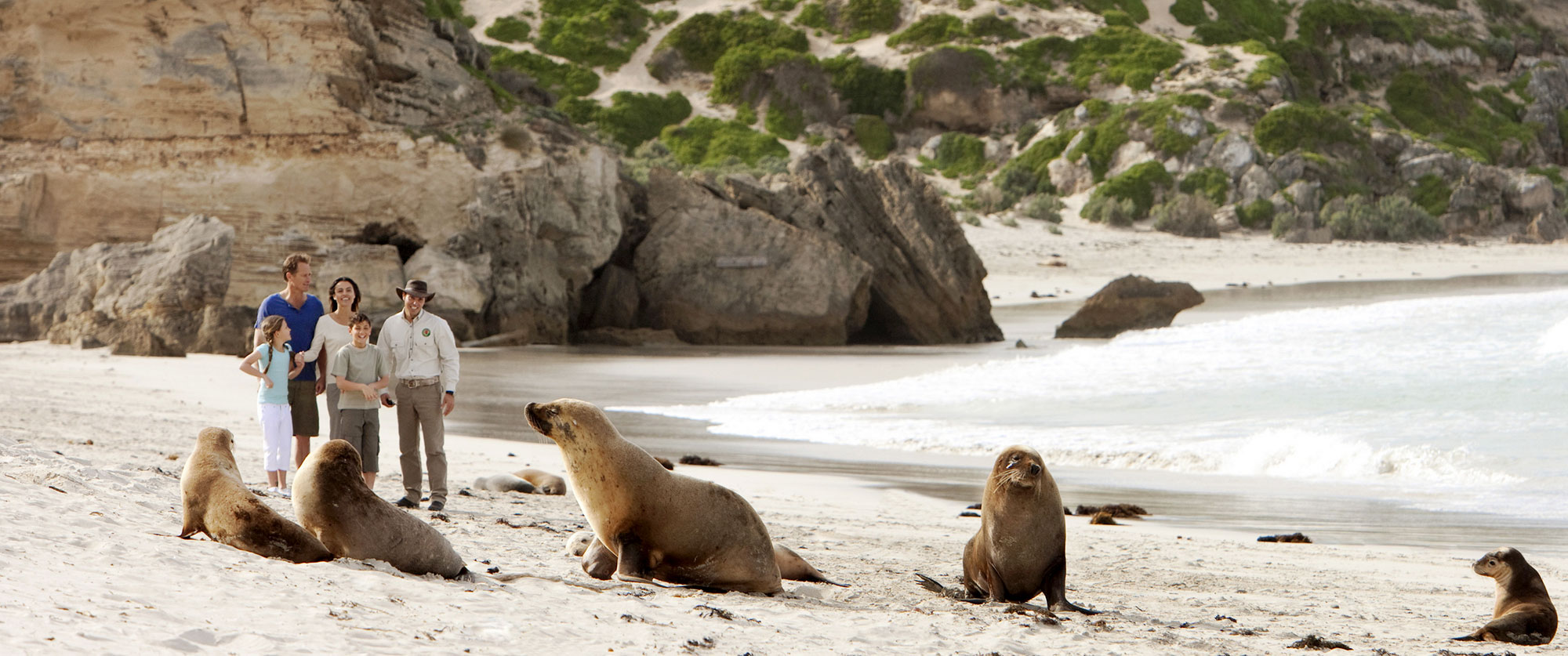 Australia Vacations - Kangaroo Island Wildlife Tours
