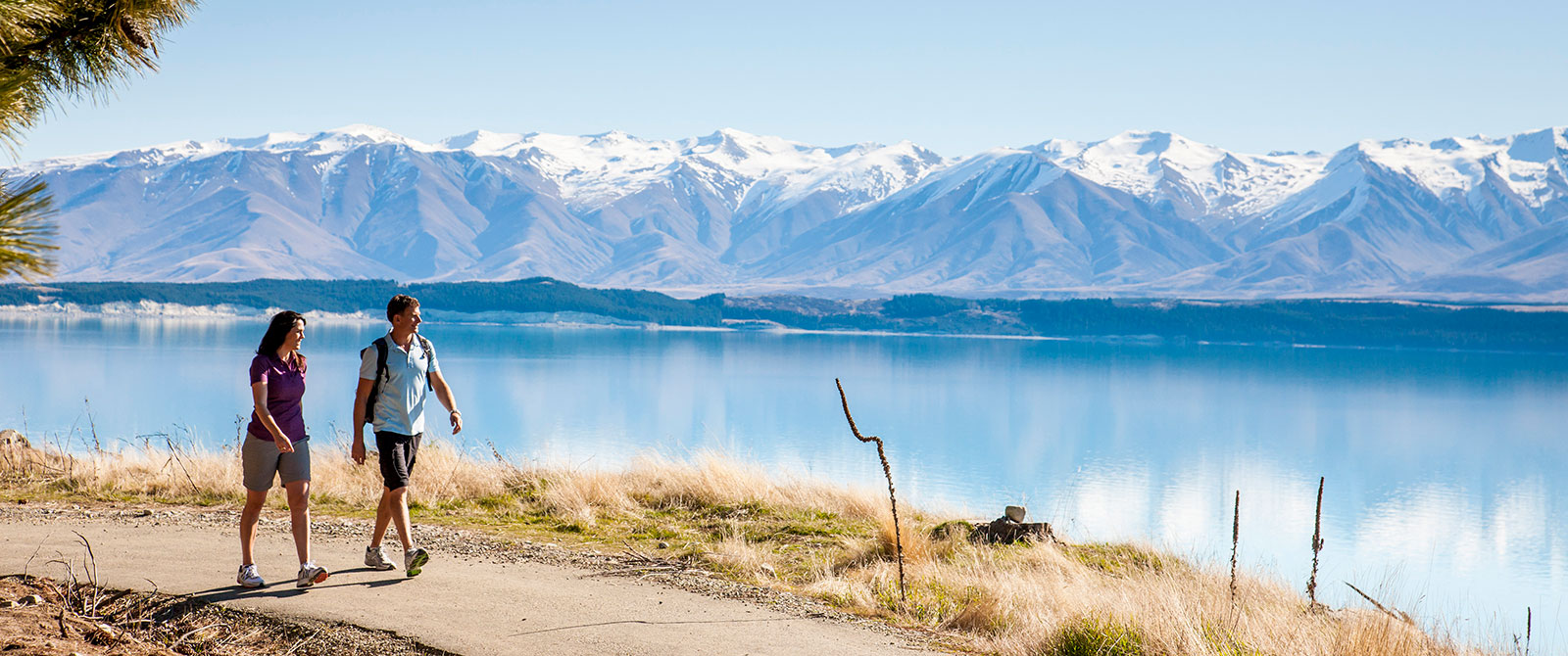 Scenic Walks in Mt Cook and Aoraki - Book Your Trip to New Zealand - New Zealand Travel Agency