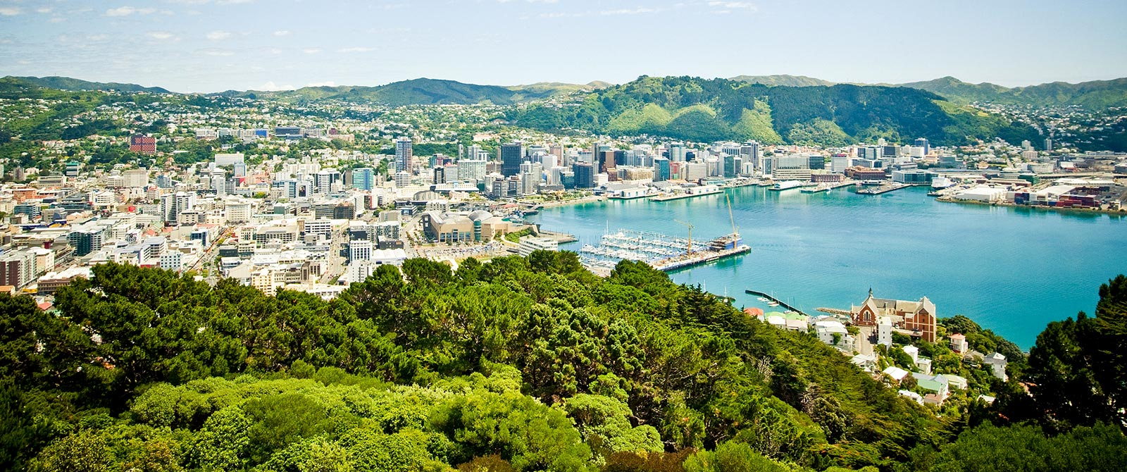 View of Wellington from Mt Victoria - Book Your Trip to New Zealand - New Zealand Travel Agency