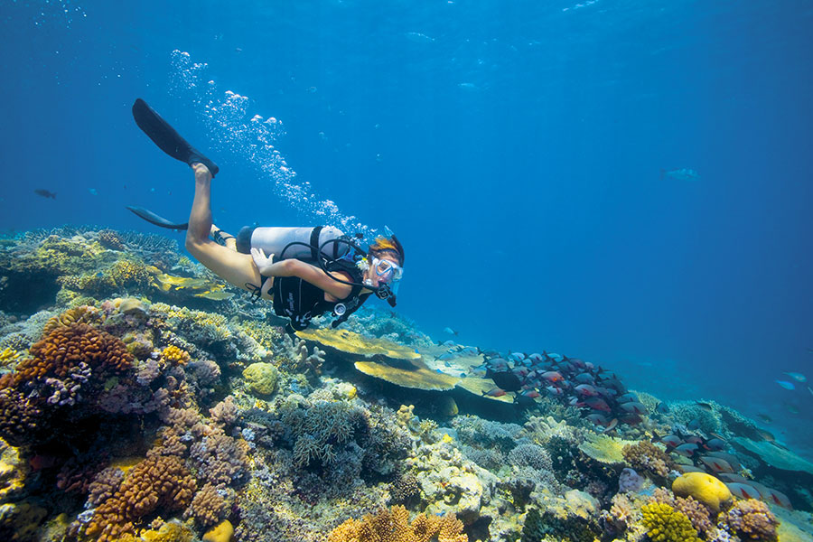 Australia Trip Packages - Great Barrier Reef - Lizard Island Luxury Resort