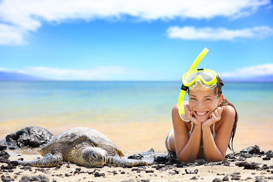 sm-sat-woman-beach-turtle-900x600