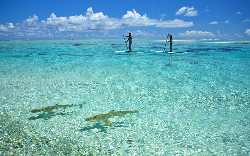 Paddleboarding Off Tikehau Atoll in the Tuamotu Islands
