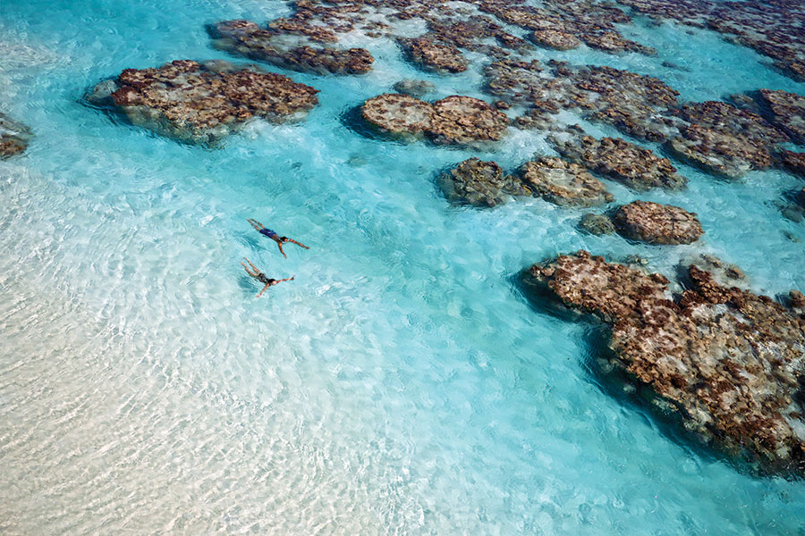 Couple Swimming in Coral Reef at The Brando Resort - Australia, New Zealand, and Tahiti