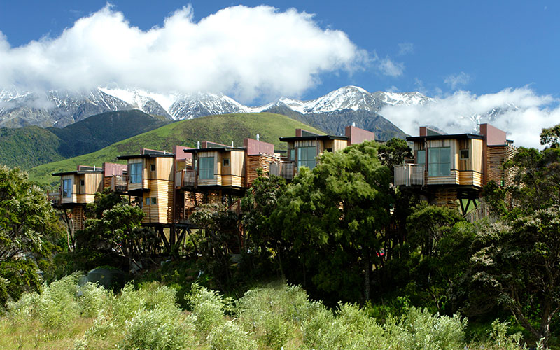 Hapuku Lodge + Treehouses - New Zealand Family Travel