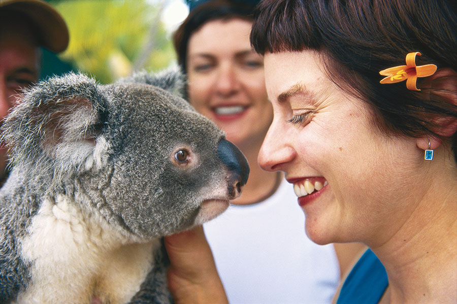 Australia Wildlife, Reef, Outback Vacations