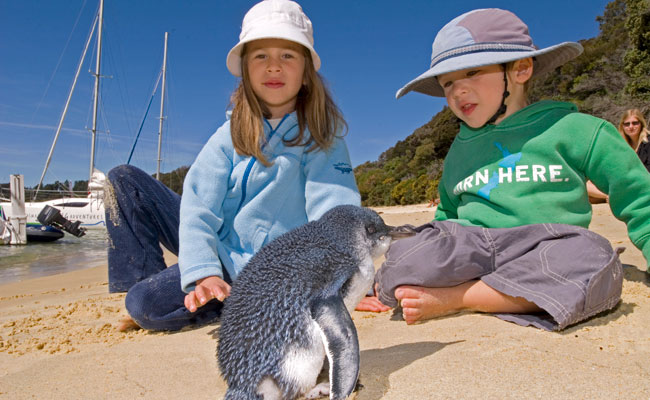 Two kids by a little blue penguin - Tourism New Zealand - Wildlife Travel