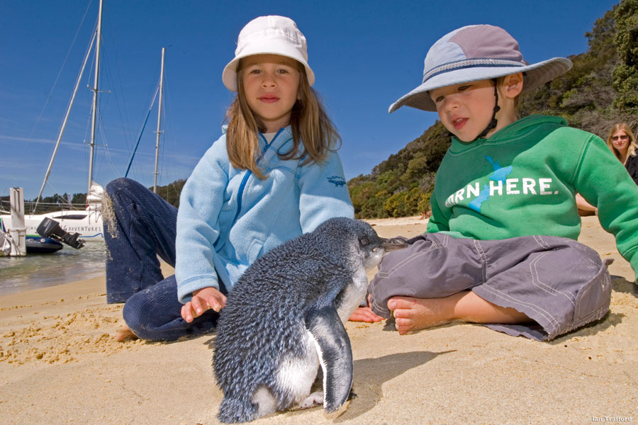 Two kids by a little blue penguin - Tourism New Zealand - New Zealand Wildlife Travel
