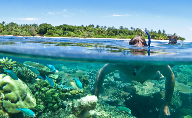 Snorkeling on a coral reef- Vomo island resort - Travel Fiji