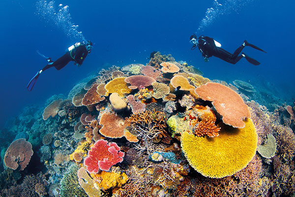 Great-Barrier-Reef-Australia-travel-winter