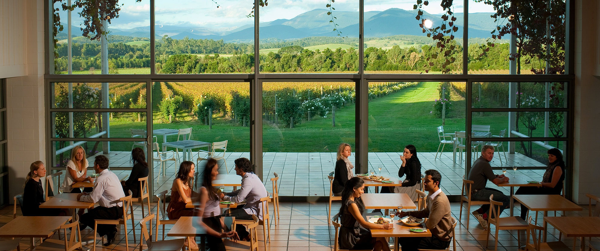 Dining at Domaine Chandon winery in the Yarra Valley, Melbourne, Victoria, Australia