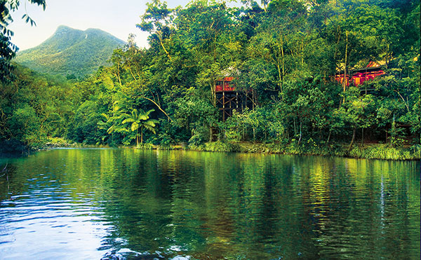 Australia Attractions - Daintree Rainforest - Silky Oaks Lodge