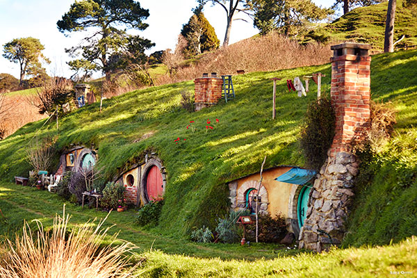 New Zealand Vacations - Hobbiton