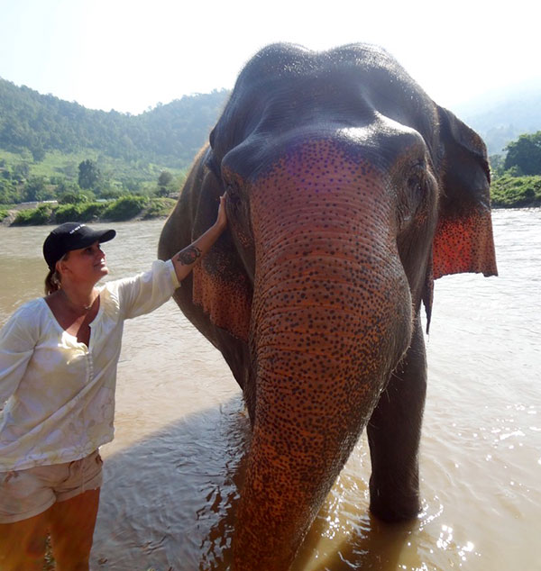 Why Visit Southeast Asia - Elephant Nature Park, Chiang Mai, Thailand