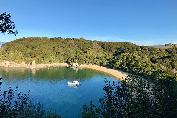 New Zealand Trips - Best Places to Go - Abel Tasman National Park