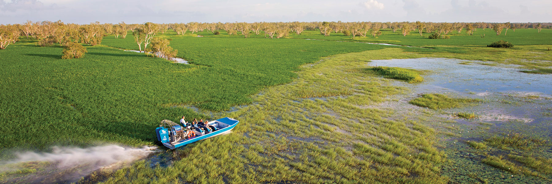 Unleash your sense of adventure with an airboat safari at Wildman Wilderness Lodge!