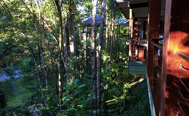 Silky Oaks Lodge - View from Treehouse Restaurant - Vanessa Massey - Australia Travel Agents