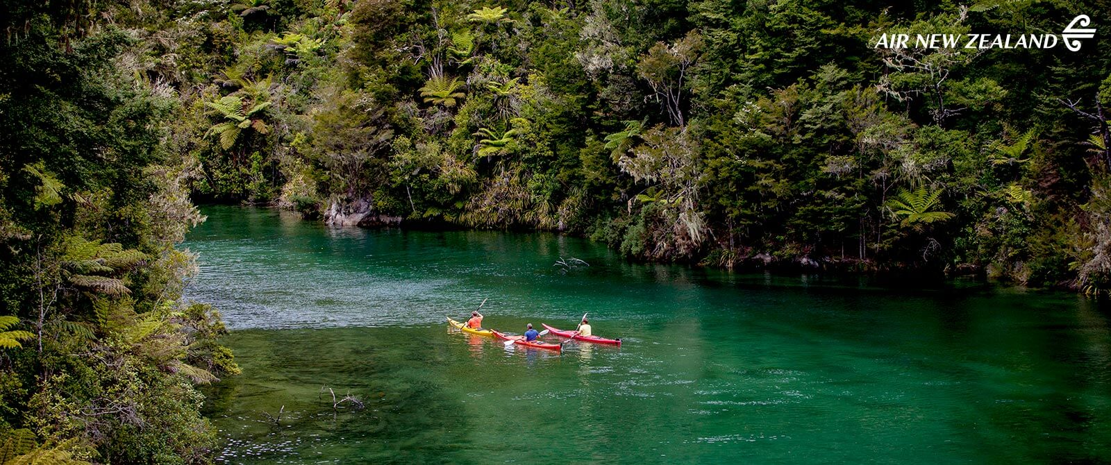 Abel Tasman National Park Kayaking - New Zealand Highlights: Scenery, Adventure, and Wine Package