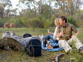 Iconic Australia Vacations - Breakfast with the Roos