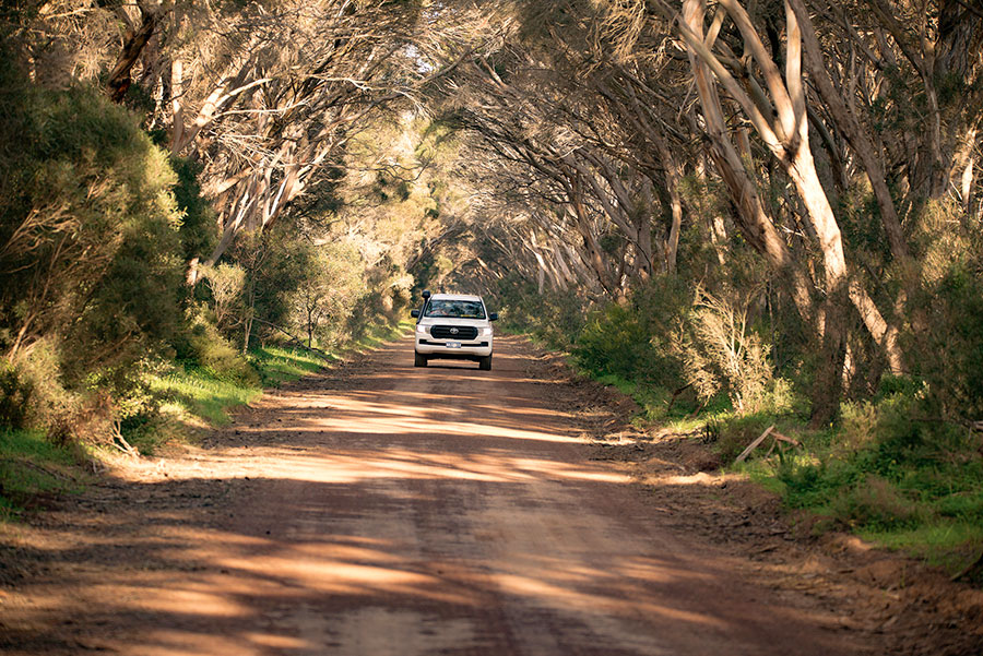 4WD Tour Vehicle - Exceptional Kangaroo Island Wildlife Tours