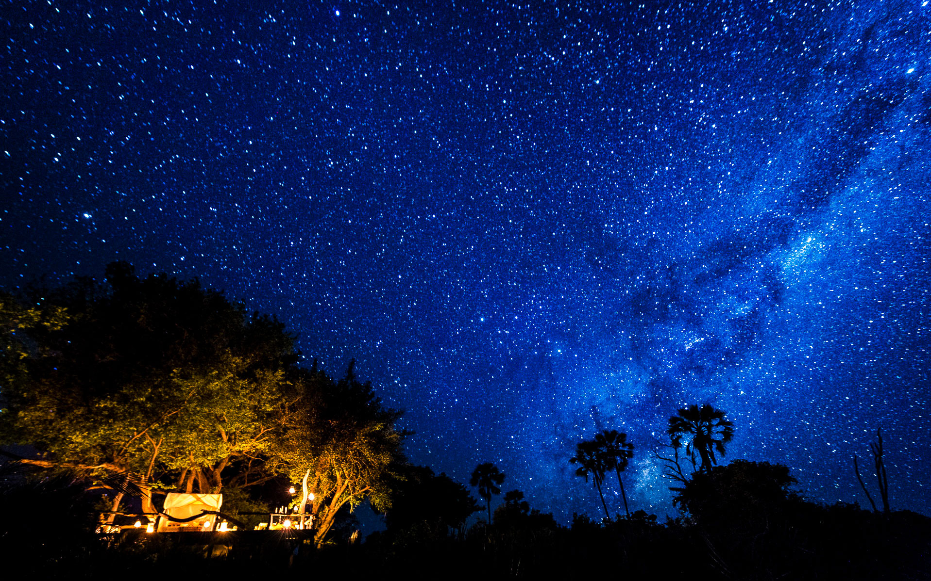 A Starry Night Sky in Botswana - Okavango Delta Safari